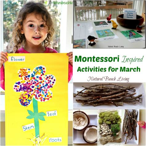 kindergarten themes for march 12 more months of montessori monthly themes natural