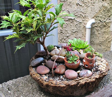 Miniature Rock Garden Photos Four New D I Y Container Miniature Gardens Mini Gardens Miniatures
