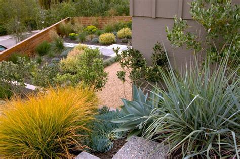 modern xeriscaping ideas for your outdoor space
