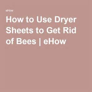 1000 ideas about getting rid of bees on bee