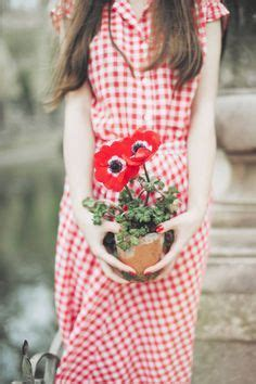 1000 images about the red poppy cottage on pinterest