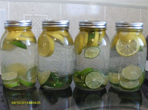 Lime And Kiwi Detox Drink by Best 25 Lemon Lime Water Ideas On Kiwi Fruit