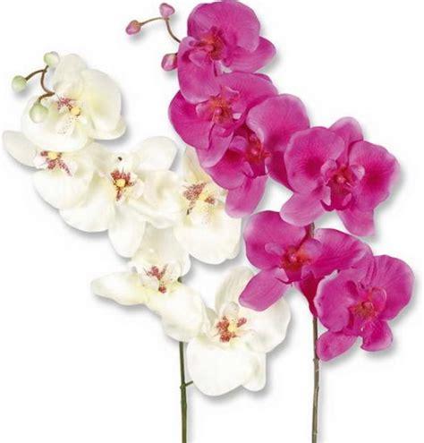 Deko Kränze Für Draußen by Seidenblumen Orchideen G 195 188 Nstig Kaufen