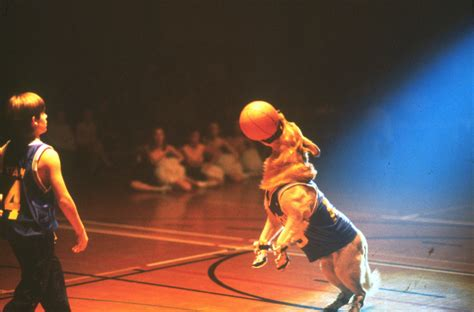 film disney basketball which summer events would disney characters participate in