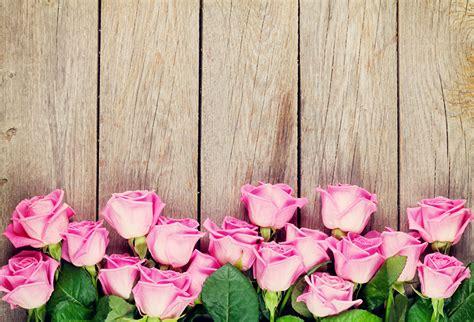 imagenes para fondos de pantalla flores fondos de pantalla rosas tablones de madera rosa color