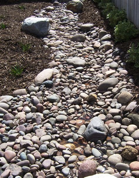 dry stream bed the 2 minute gardener march 2013