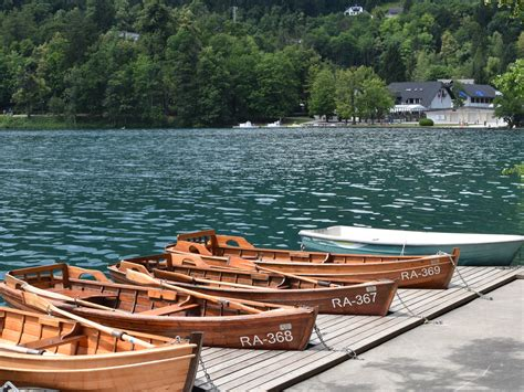 row boat hire lake bled 7 active things to do in lake bled wood and luxe by