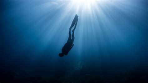 zen and the art of not dying what i learned freediving in
