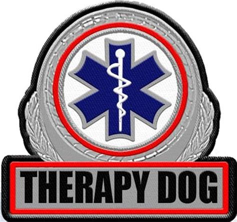 therapy in patch metallic therapy patch large patch for therapy vest