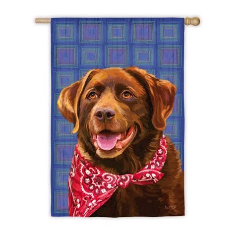 labrador dog house chocolate lab labrador dog outdoor house garden flag decorative 12 5 quot x 18 quot