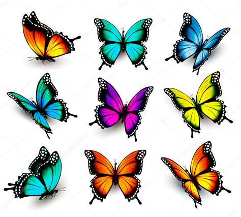 colorful butterflies collection of colorful butterflies flying in different