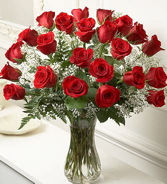 long stem roes flowers for valentine day.png (4 comments)