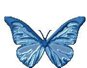 imagenes gif mariposas en movimiento gifs animados de mariposas animaciones de mariposas