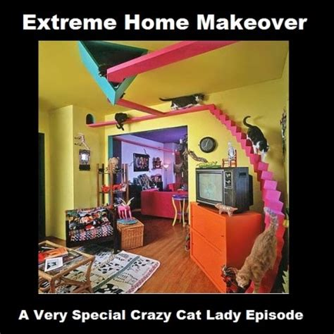 Funny Cat Lady Memes - top 11 best pics of the crazy cat lady meme photos