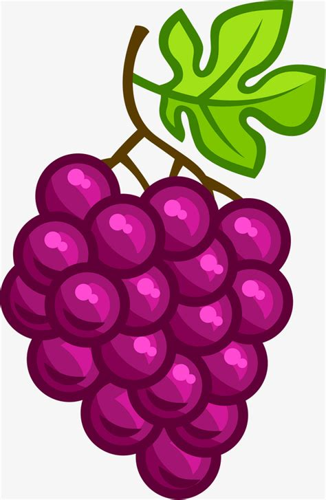 imagenes de unas uvas animadas purple cartoon uvas violeta cartoon uva png image para