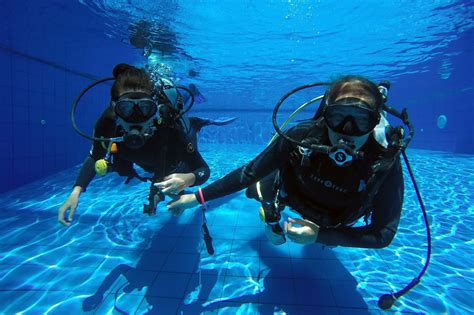 padi dive open water diver all 4 diving
