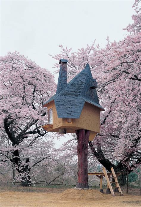 cherry tree house in japan a charming fairytale like treehouse built for enjoying cherry blossoms designtaxi