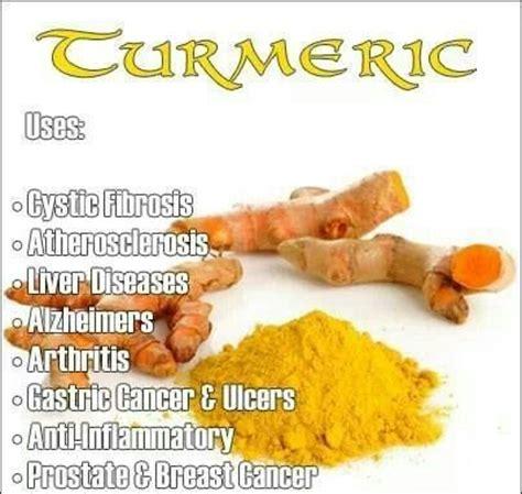 Turmeric Medicinal Uses by Turmeric Benefits Turmeric Benefits
