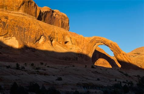 corona arch swing death death at corona arch family cing