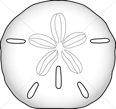 coloring page sand dollar sand dollar wildlife clipart