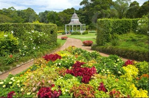 Wollongong Botanic Garden Wollongong Botanic Gardens Things To Do Date Nights Or Random Adve