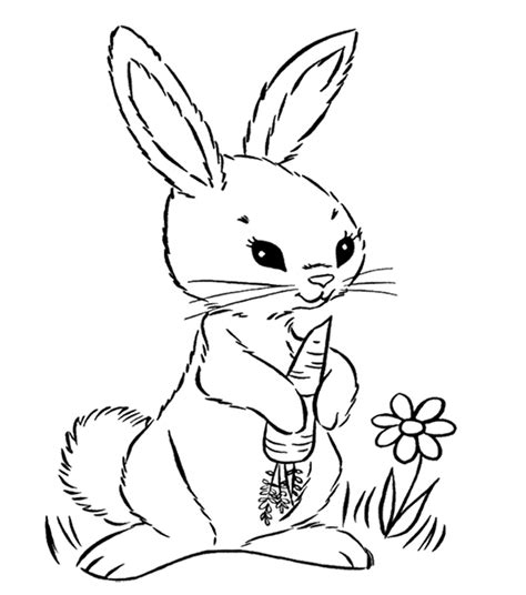 hopping bunny coloring page 93 hopping bunny coloring page astonishing bunny