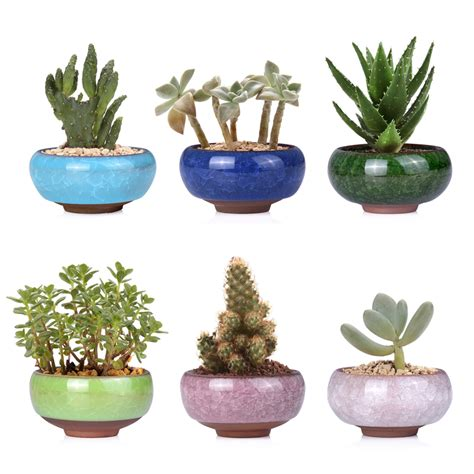 small ceramic succulent plant pots flower planter