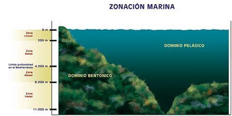 los senderos del mar 8416748470 senderos bajo el mar 183 rutas submarinas de la costa blanca 183 diputaci 243 n provincial de alicante