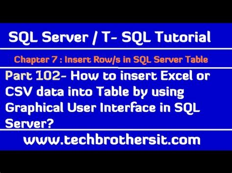 insert data into table sql insert data into table from excel file in sql server