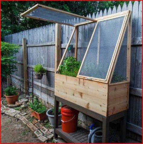 56 Best Images About Tortoise Enclosure Ideas On Pinterest Vegetable Garden Enclosures