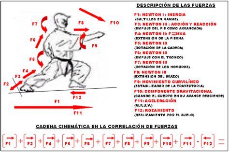 cadena cinematica boxeo el karate do desde la 243 ptica de la f 237 sica mec 225 nica