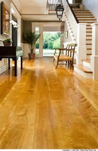 yellow birch modern wood flooring chicago by carlisle wide plank floors