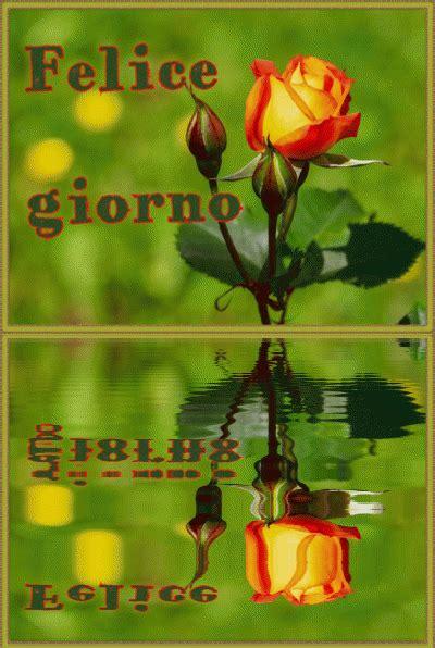 buongiorno gif good morning gif  immagini da scaricare gratis  video amicaart