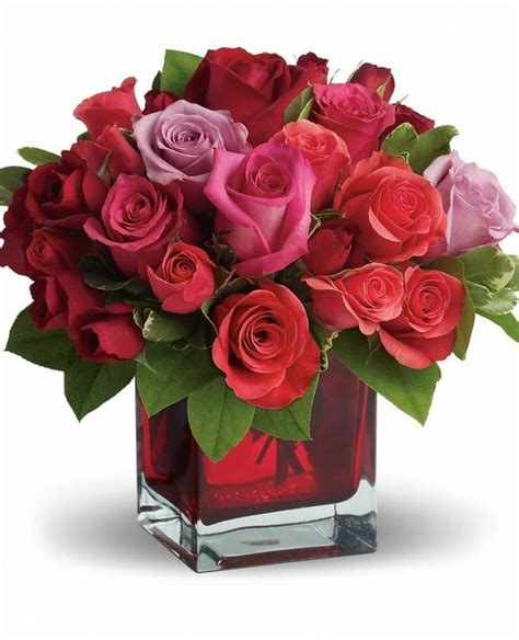 cheap flowers for valentines the meaning of flowers for valentine s day and gives to
