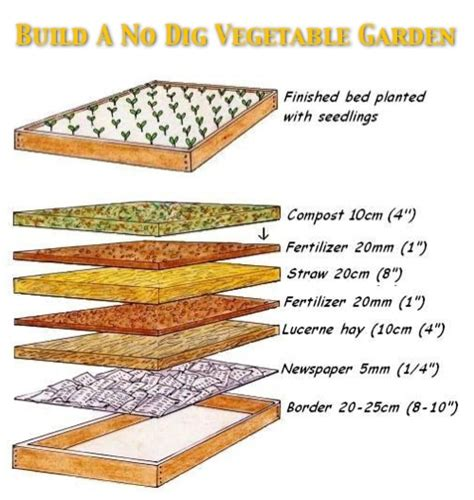 no dig vegetable garden how to build a no dig organic vegetable garden