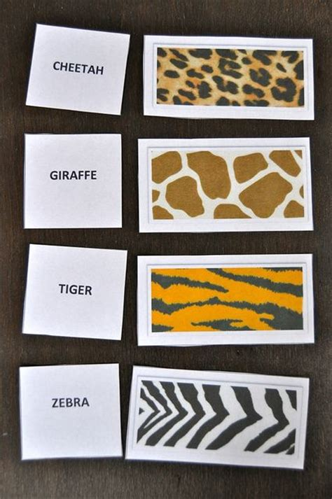 animal pattern name zoo week for preschoolers wild animals theme pinterest