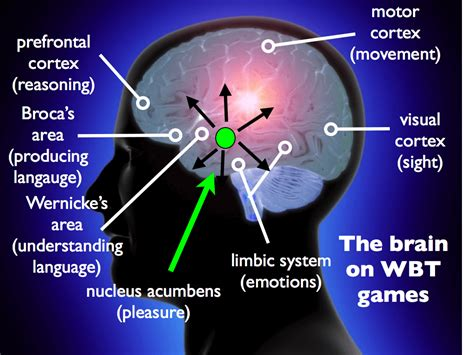 brain course whole brain teaching
