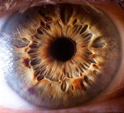 imagenes de ojos por dentro ojos por dentro taringa