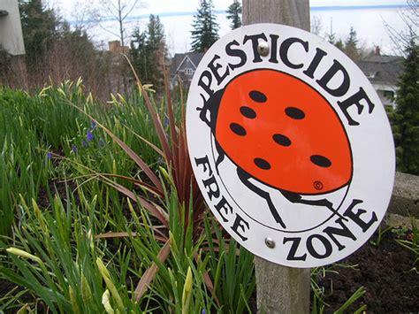 organic gardening simple ways  avoid  pesticides