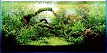 takashi amano aqua design amano awesome aquariums