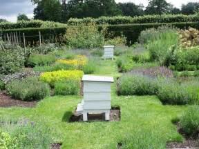 houghton herb garden bee hives the herb garden of