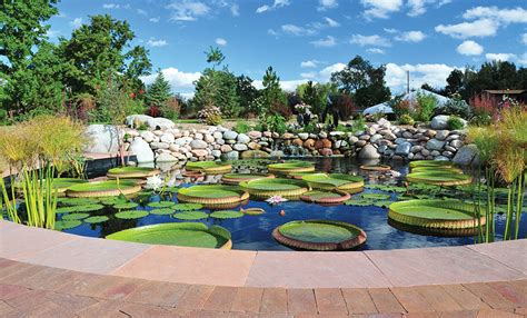 Denver Botanic Gardens Events High Altitude Hybridizing Pond Trade Magazine