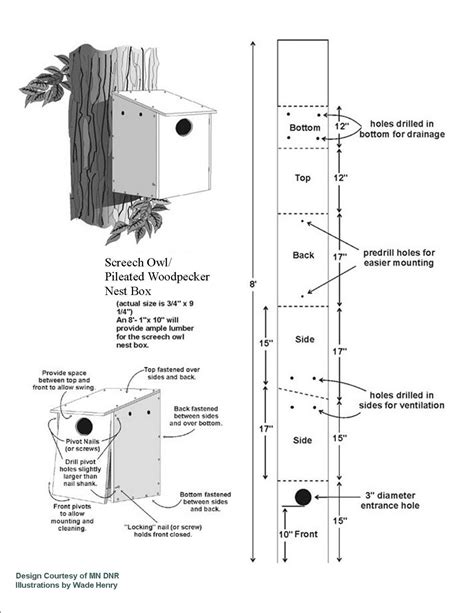 finch bird house plans bird house plans for hummingbirds