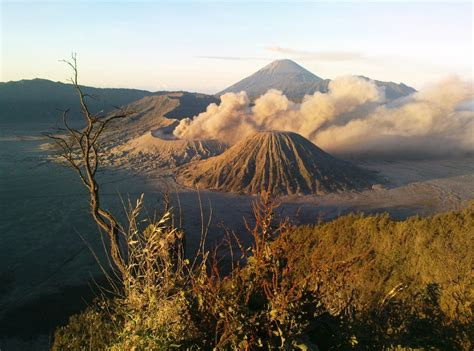 Rakyat Jawa Timur Jawa Gunung Bromo 5 tempat wisata gunung bromo dan sekitarnya yang lagi hits tahun ini pusat informasi tempat wisata