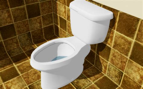 bathroom comod how to fix a slow toilet 11 steps with pictures wikihow