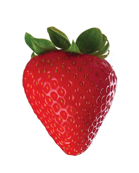 fresh facts about strawberries edible news