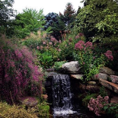 Hahn Horticulture Garden by Small Waterfall Picture Of Hahn Horticulture Garden At Virginia Tech Blacksburg Tripadvisor