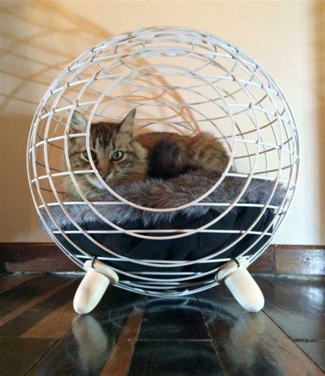 modern cat bed furniture feline fancies modern cat bed adorable home