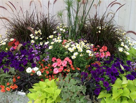 flowers for container gardening container flower gardening in florida ideas home