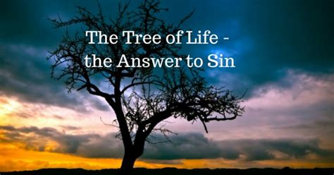 the tree a novel of the wrath athenaeum books by his blood jesus friend of sinners